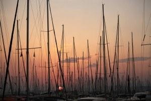 Veel masten